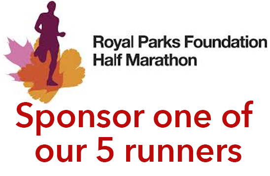 Sponsor one of our 5 runners